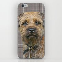Border Terrier Dog On A … iPhone & iPod Skin