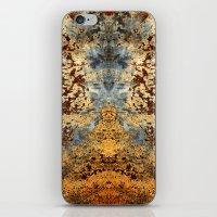 Beautiful Rust iPhone & iPod Skin