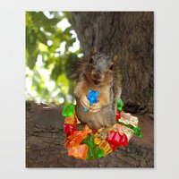 What Gummy Bears? Canvas Print