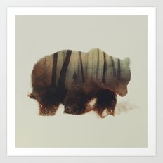 Watched By Grizzly Bear Art Print