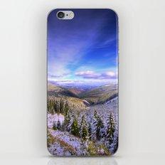 Winter Lands II iPhone & iPod Skin