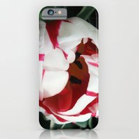 A Little Shy iPhone 6 Slim Case