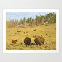 Buffalo Soldiers 2 Art Print