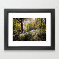Montreal Autumn Framed Art Print