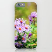 Purple Aster iPhone 6 Slim Case
