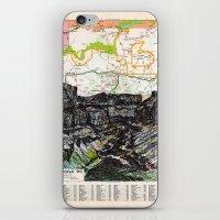 Arizona iPhone & iPod Skin