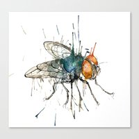 I said the fly Canvas Print