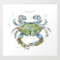 Atlantic Blue Crab 2014 Art Print
