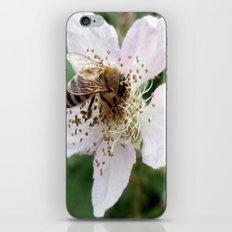 Ingestion iPhone & iPod Skin
