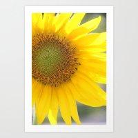 Bright and Sunshiny Day Art Print