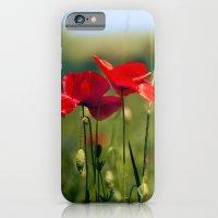 Poppies  iPhone 6 Slim Case