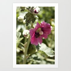 Buzzing here and there Art Print