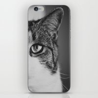 Cat Eye iPhone & iPod Skin