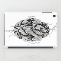 ~~~ iPad Case