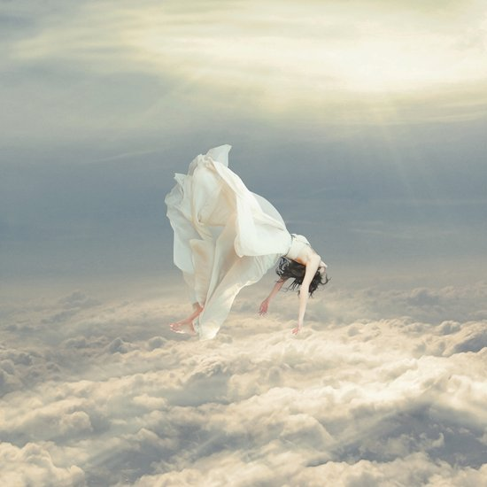 Free Falling Dream Art Print
