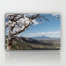Mesa Verde Laptop & iPad Skin