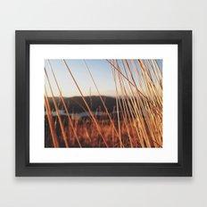 fine looking weeds  Framed Art Print
