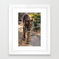 Rahja Framed Art Print
