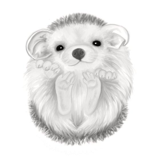 Baby Hedgehog Art Print