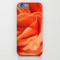 Rosa Vieja iPhone 6 Slim Case