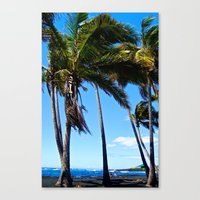 Hawaii Palms Canvas Print