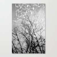 Nothing Written In The S… Canvas Print