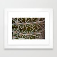 Deceiving Cactus Framed Art Print
