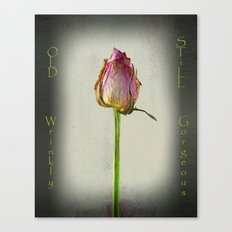 Old, Wrinkly, Still Gorg… Canvas Print