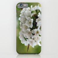 Cluster Fuhlowers. iPhone 6 Slim Case