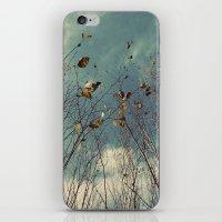 Sereta iPhone & iPod Skin