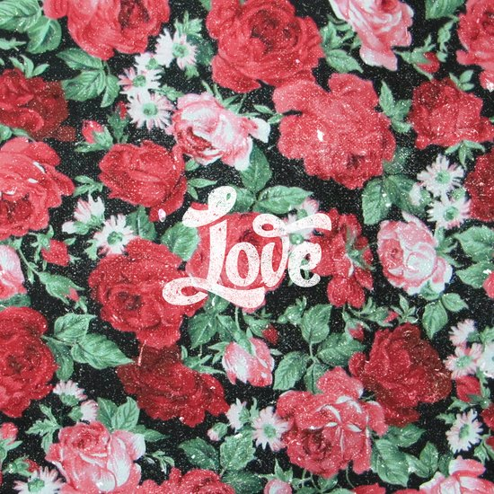 Red Pink Roses Chic Love Vintage Floral Pattern Art Print