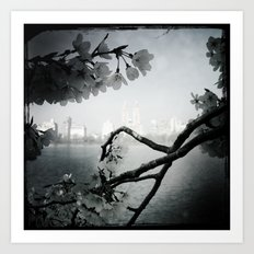 San Remo Behind Cherry Blossoms Art Print