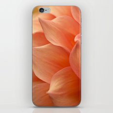 Gentle Petals iPhone & iPod Skin