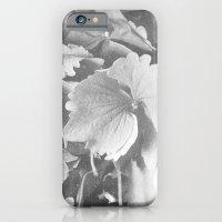 iPhone & iPod Case featuring hydrangea by Kristen Mintz