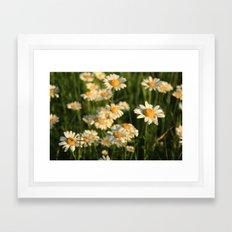 Field of Happiness Framed Art Print