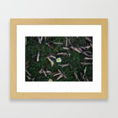 The Lone Flower Framed Art Print