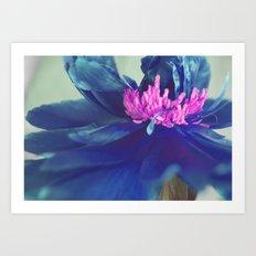 The blue peony Art Print