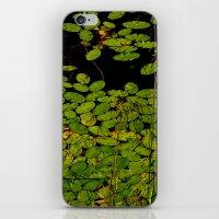 Sprinkles of green iPhone & iPod Skin