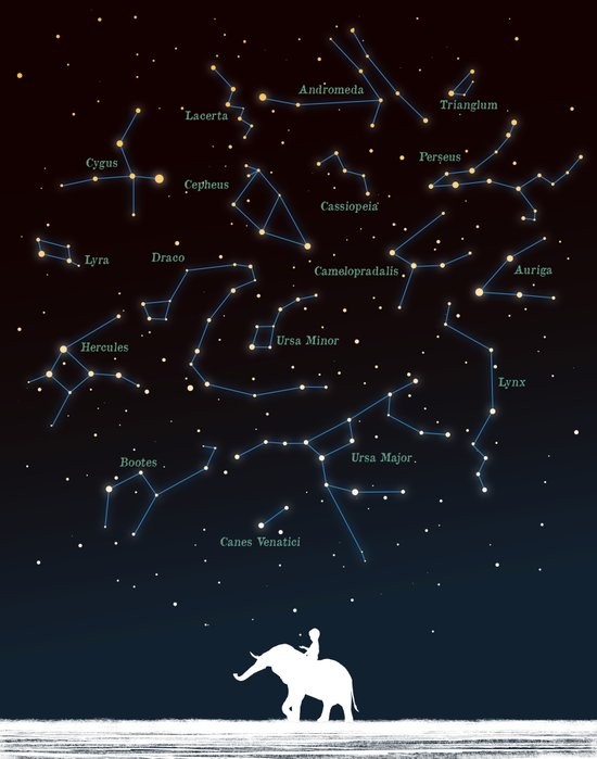 Falling star constellation Art Print