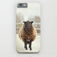 iPhone & iPod Case featuring Zombie sheep by Pauline Fowler ( Polly470 )