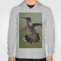 Hummingbird in Flight Hoody