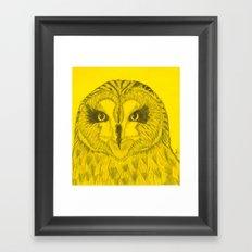 Short-Eared Owl Framed Art Print