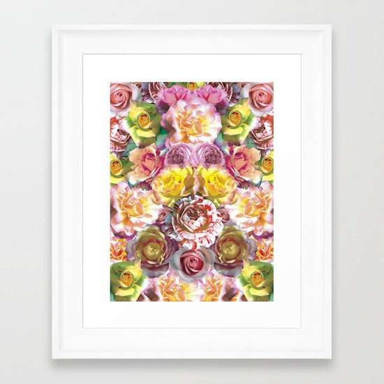 Rose Bloom Framed Art Print