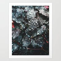 fresh morning Art Print