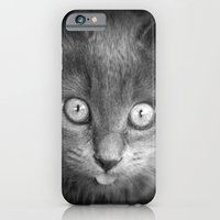 mystery cat iPhone 6 Slim Case