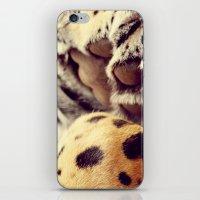 Cuddle Up iPhone & iPod Skin