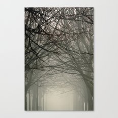 Branches meeting in the fog Canvas Print