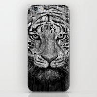 Tiger Black & White iPhone & iPod Skin