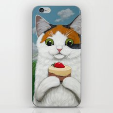 CAKES AND KITTENS iPhone & iPod Skin