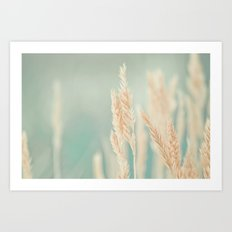Magical Field Art Print
